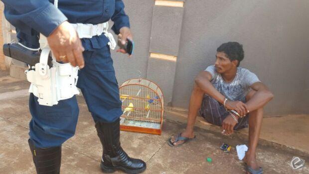 Ladrão atrapalhado furta passarinhos belgas e é preso usando chinelos da vítima