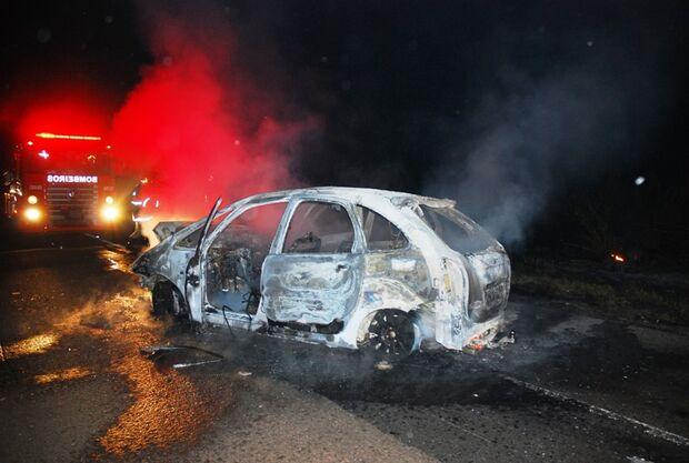 Veículo pega fogo após atropelar anta na BR-267