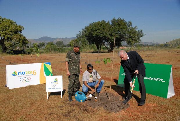Reflorestamento fica abaixo da meta prevista como legado dos Jogos 2016