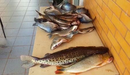 Polícia prende foragido que cometeu homicídio, flagrado com pescado e petrechos de pesca ilegais