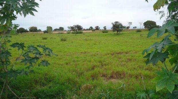 Governo realiza leilão de imóveis nos municípios de Coxim e Camapuã