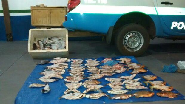 PMA autua assentado em R$ 1,7 mil por armazenar 52 kg de pescado ilegal
