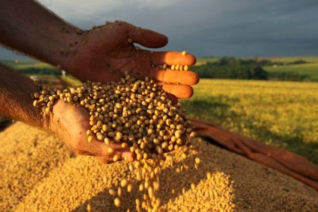 Produção brasileira de grãos deve atingir até 214,8 mi de toneladas