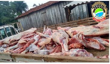 Operação recolhe mais de cinco toneladas de alimentos impróprios para consumo