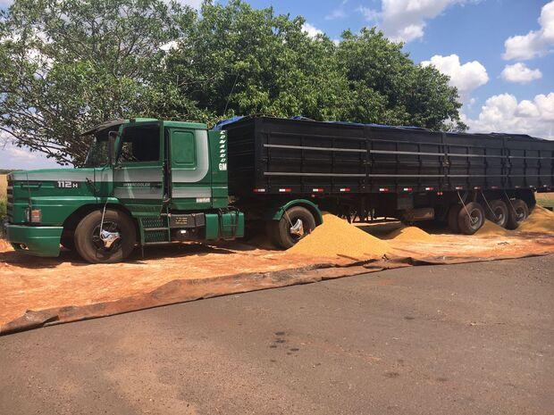 Surpresa: em vez de carga de milho, caminhão levava 1,6 toneladas de maconha