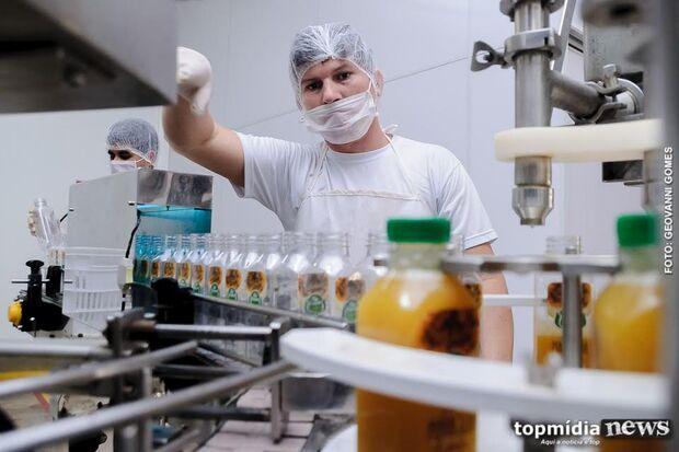 Promissor: setor de alimentos saudáveis cresce 80% em MS