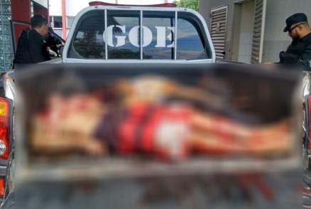 Seis suspeitos de assaltar agência do Sicredi são mortos pela polícia em Rondonópolis