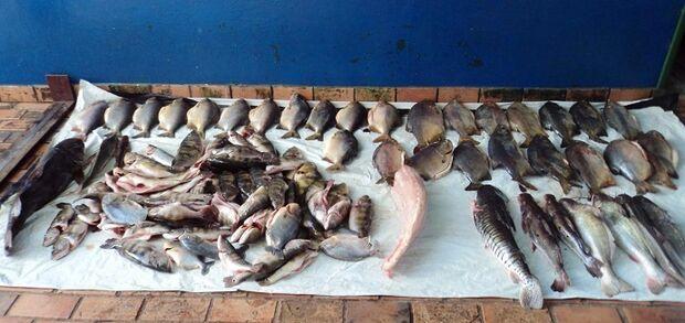 ''Operação Padroeira do Brasil'' da PMA intensifica ações contra pesca predatória nos rios de MS