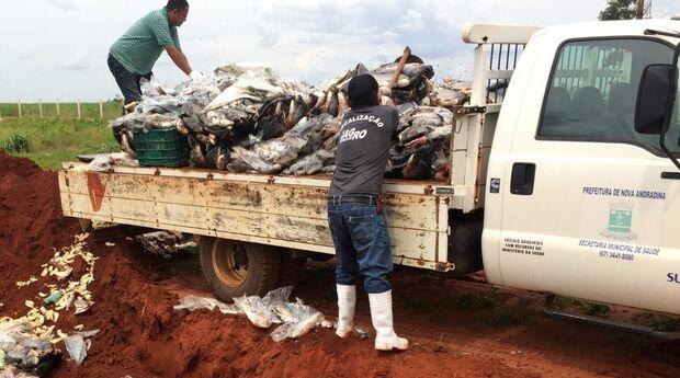 Mais de 30 toneladas de produtos impróprios para consumo foram retirados de circulação