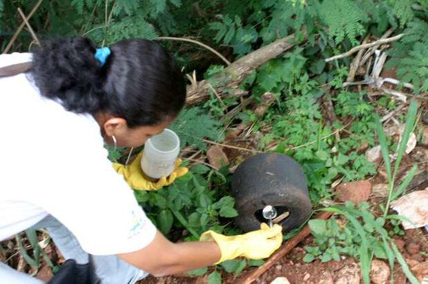 Brasil mantém emergência nacional em saúde pública por causa da zika
