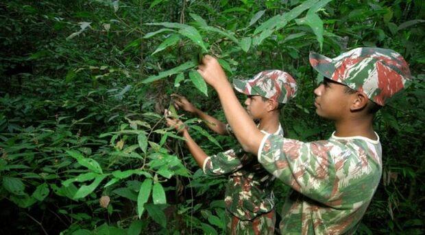 Projeto Florestinha comemora 24 anos atendendo 500 crianças em situação de risco