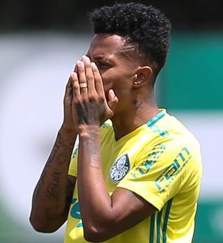 Palmeiras vê sequência em casa decisiva na reta final do Brasileirão