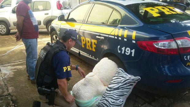 PRF apreende urso de pelúcia recheado de cocaína na BR-262