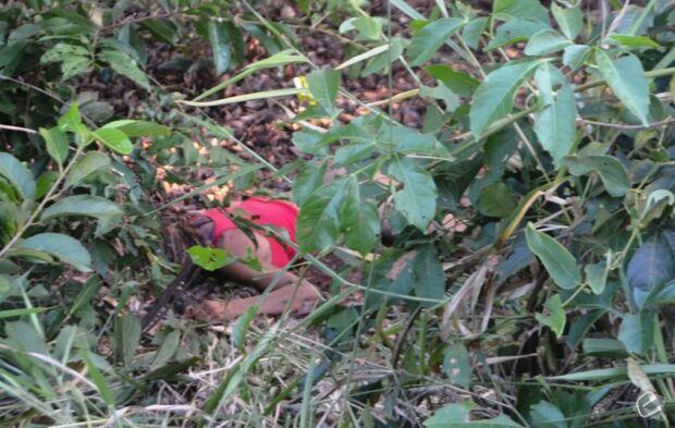 Jovem encontrada às margens da MS-427 morreu em decorrência de um TCE