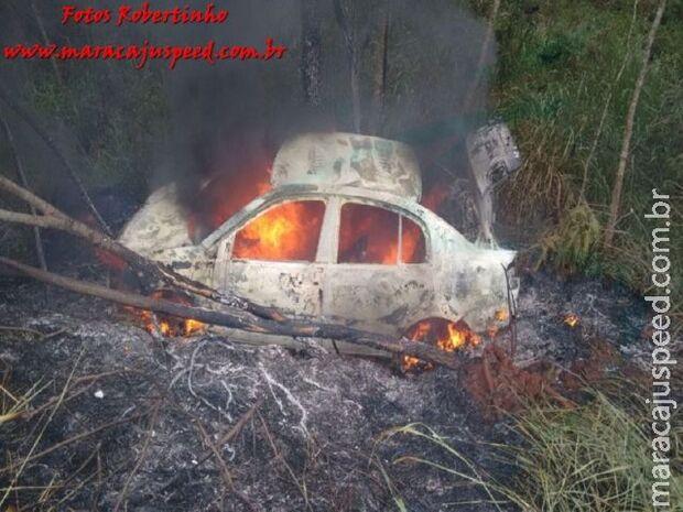 Vídeo: condutor bate em capivara, perde controle da direção e carro pega fogo