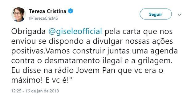 Após polêmica, Tereza Cristina diz que Gisele Bündchen é 'o máximo'