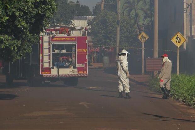 Ataque de abelhas leva pânico ao centro de cidade e grávida e mais três ficam feridos
