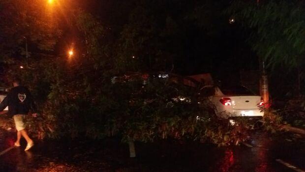 Com a casa alagada, morador teve que abrir buraco na parede e ainda perdeu muro após árvore cair