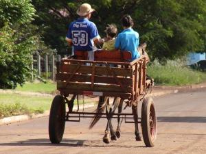 Suspeitos furtam carroça e cavalo e dona lamenta perda do animal