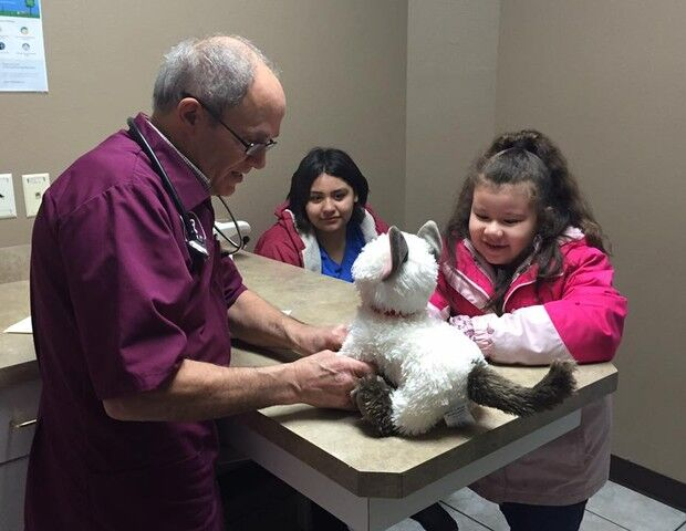 "Veterinário atende gato de pelúcia ""doente"" de menina autista"
