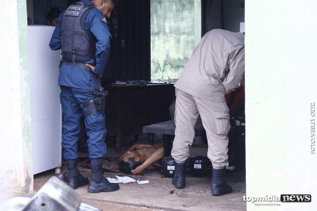 Membro do PCC é esfaqueado por barbeiro após negar pagar conta e ameaçar clientes