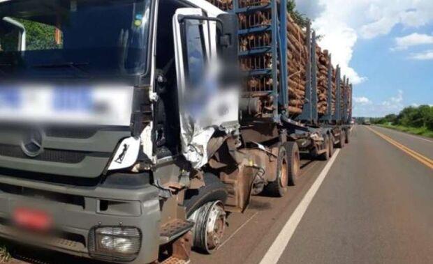 Veículo bate em carreta carregada de eucalipto e motorista morre