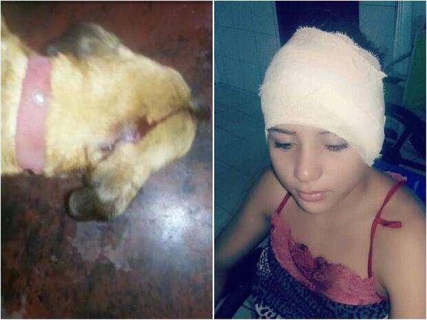Homem esfaqueia mulher e cachorro durante briga de vizinhos