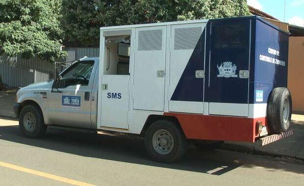 Setor de endemias investiga morte de criança vítima de leishmaniose em cidade do MS