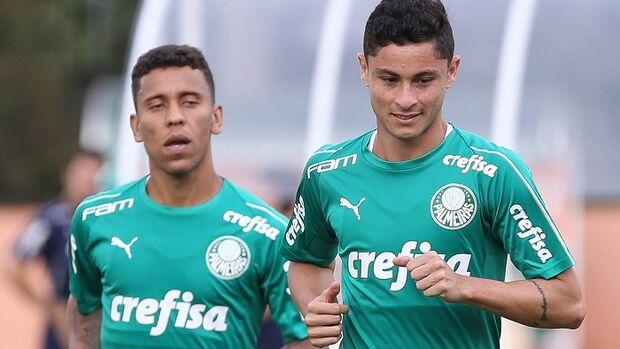Em duelo de tabus, Palmeiras e Novorizontino decidem vaga à semifinal