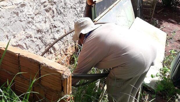 Em 4 dias, força-tarefa contra o aedes inspecionou mais de 3,5 mil imóveis