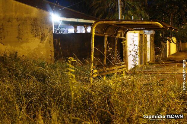 Mato de área particular invade ponto de ônibus na Vila Planalto: quem deve limpar?