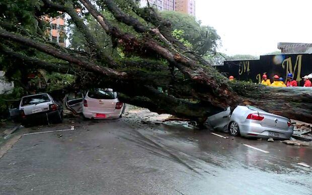 Solidariedade: alunos de faculdade se unem para ajudar vendedora que perdeu carro em chuva