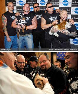 Motoclube acaba com ringues de luta de cães e se dedica ao resgate de animais