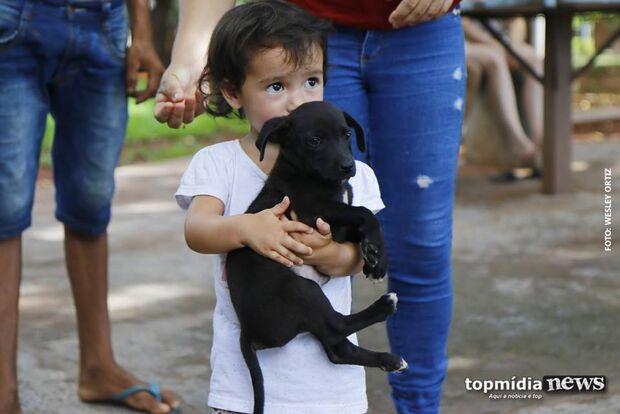 CCZ promove feira da adoção neste sábado