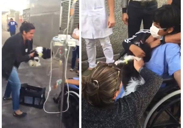 Hospital permite despedida entre menino internado e cachorrinha