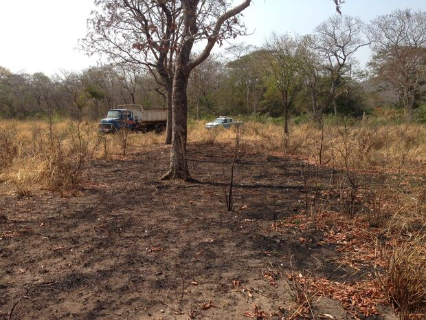 Vigia morre 22 dias após ser internado por acidente de trabalho com trator no Pantanal