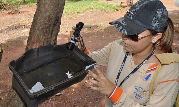 Iracy Coelho recebe força-tarefa de combate a dengue neste fim de semana