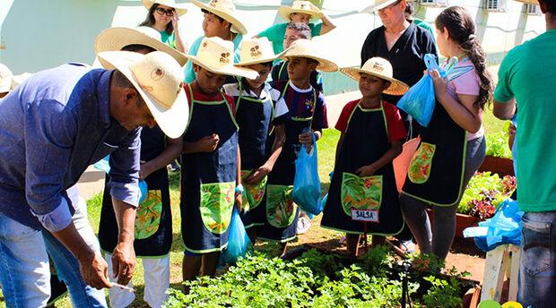 Produção da Horta Orgânica do Rede Solidária beneficia crianças, adolescentes e suas famílias