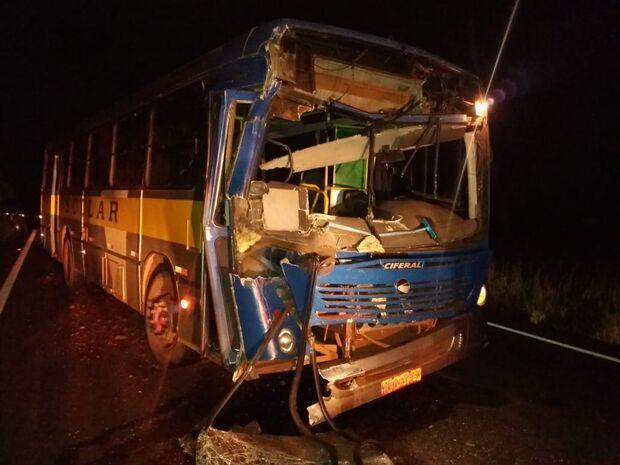Anta invade pista de rodovia e causa acidente entre ônibus e caminhão