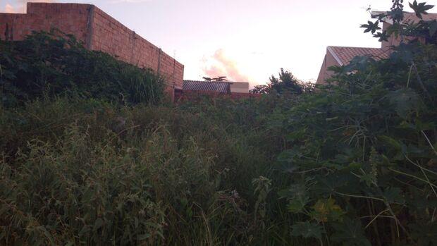 No Morada do Sossego, falta tranquilidade para vizinha de terreno sujo e com ratos