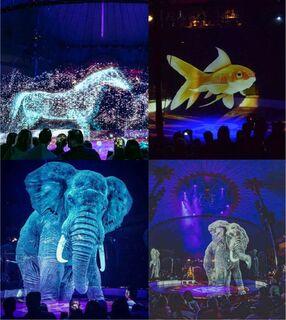 Circo alemão diz 'não a maus-tratos' e substitui animais por lindos hologramas