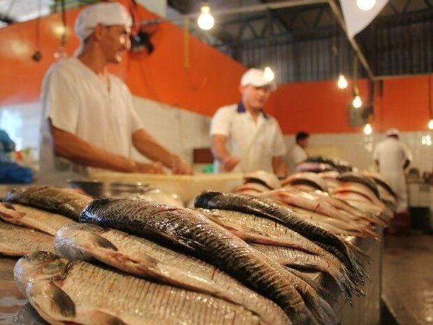 Procon Estadual realiza pesquisa e detecta diferenças que chegam a 181% em preços de pescados