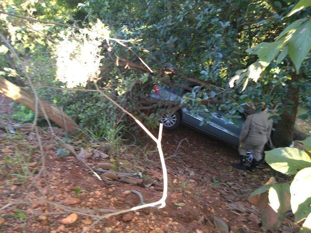 Motorista perde controle da direção de carro, cai em barranco e bate em árvore