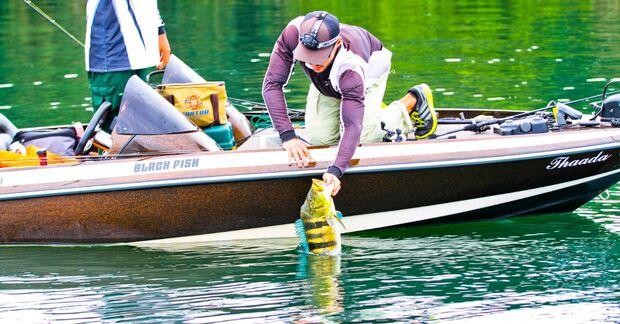 Pescadores de 12 estados apoiam cota zero em MS e pedem inclusão do tucunaré