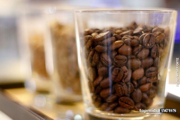 Café faz mal? No Dia Nacional da bebida, vamos conhecer alguns benefícios e malefícios para saúde