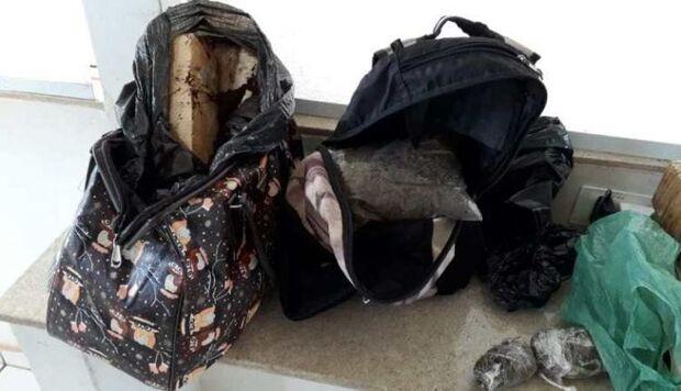 Com mochilas 'recheadas' de droga, adolescente é apreendida às margens de rodovia
