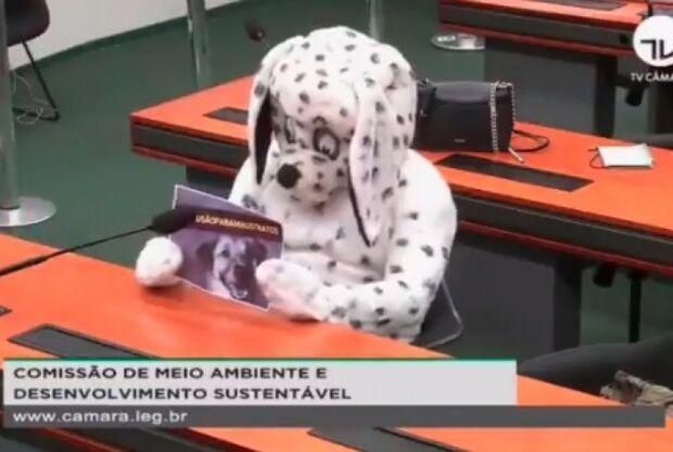 É mole? Homem vestido de cachorro rouba a cena em sessão da Câmara