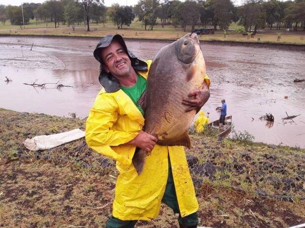 Peixes de até 12 kg foram retirados e lago começa a ser desassoreado no Parque