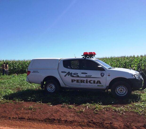 Grávida é encontrada morta em plantação de milho