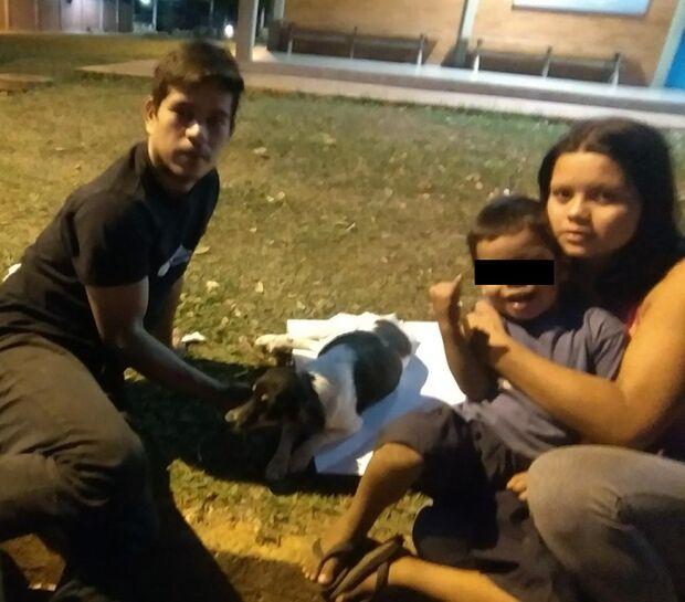 Expulsa de quarto, família quer abrigo perto de hospital veterinário para tratar cadela atropelada